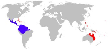Cane Toad Range Map (Australia and Central & South America)