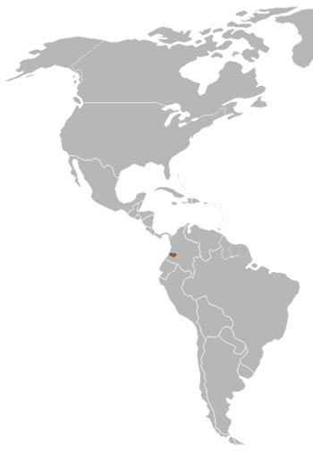 Colombian Weasel Range Map (Colombia, S America)