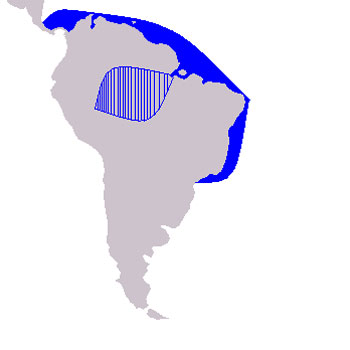 Costero Range Map (Coastal Waters - South America)