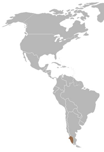 Darwin's Frog Range Map (South America)