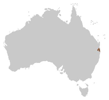 Fleay's Barred Frog Range Map (Eastern Australia)