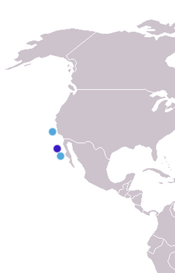 Guadalupe Fur Seal Range Map (Guadalupe Island, Channel Islands & Isla Cedros)