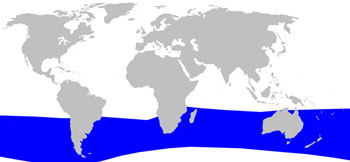 Hector's Beaked Whale Range Map (Cool Temperate Waters - Southern Hemisphere)