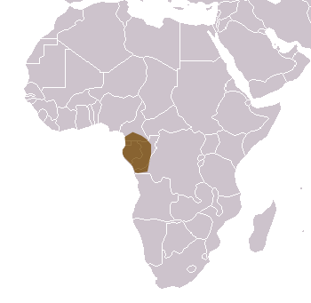 Mandrill Range Map (Africa)