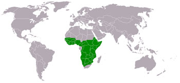 Martial Eagle Range Map (Africa)