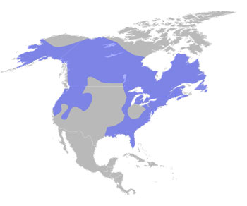 North American River Otter Range Map (North America)