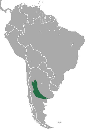 Pink Fairy Armadillo Range Map (South America)