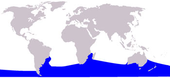 Southern Right Whale Range Map (Southern Oceans)